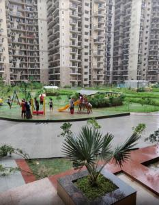 Gallery Cover Image of 1125 Sq.ft 3 BHK Apartment for rent in  La Residentia, Noida Extension for 8500