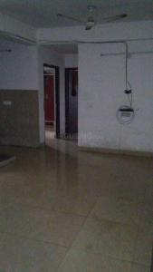 Gallery Cover Image of 1300 Sq.ft 3 BHK Apartment for rent in Sector 75 for 14000