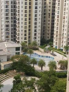 Gallery Cover Image of 1115 Sq.ft 2 BHK Apartment for rent in Amrapali Princely Estate, Sector 76 for 14500