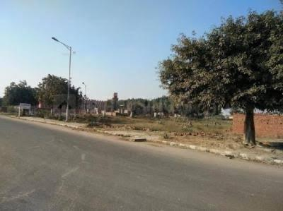 2259 Sq.ft Residential Plot for Sale in Sector 84, Faridabad