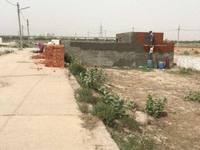 810 Sq.ft Residential Plot for Sale in Sector 144, Noida
