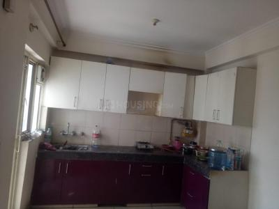 Gallery Cover Image of 1075 Sq.ft 2 BHK Apartment for rent in Panchsheel Greens, Noida Extension for 8500