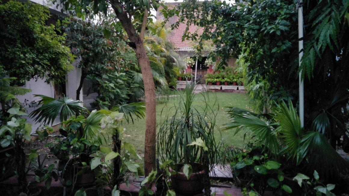 Garden Area Image of 11250 Sq.ft 3 BHK Independent House for buy in Kakadeo for 52500000