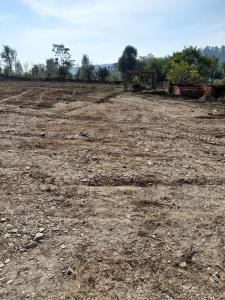 2700 Sq.ft Residential Plot for Sale in Kulhan, Dehradun