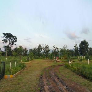 1647 Sq.ft Residential Plot for Sale in Neral, Thane