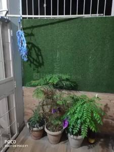 Gallery Cover Image of 750 Sq.ft 1 BHK Independent Floor for buy in Jamia Nagar for 2800000