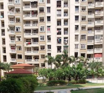 Gallery Cover Image of 1035 Sq.ft 2 BHK Apartment for rent in Sector 76 for 20000