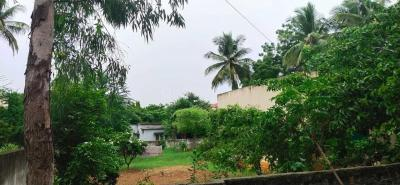 Gallery Cover Image of 1300 Sq.ft 2 BHK Independent House for buy in Sainikpuri for 65000000