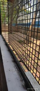 Balcony Image of Parag PG House in Sadashiv Peth