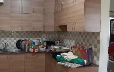 Gallery Cover Image of 1060 Sq.ft 2 BHK Apartment for rent in Noida Extension for 8500