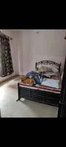 Gallery Cover Image of 630 Sq.ft 1 BHK Apartment for buy in Sai Dham Co.operative Society, Shahad for 4200000