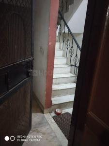 Staircase Image of PG 5481396 Karol Bagh in Karol Bagh