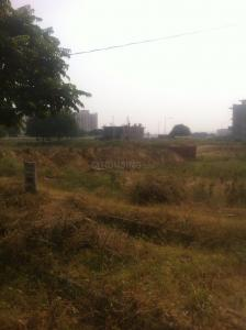 Gallery Cover Image of  Sq.ft Residential Plot for buy in Sector 85 for 13000000