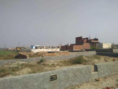 Gallery Cover Image of 540 Sq.ft Residential Plot for buy in Sector 143A for 600000