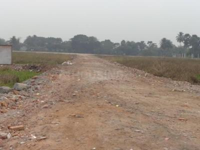 Gallery Cover Image of  Sq.ft Residential Plot for buy in Baruipur for 250000
