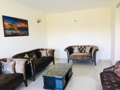 Hall Image of 2253 Sq.ft 3 BHK Apartment for buy in Aradhana Green, Sunderwala for 7650000