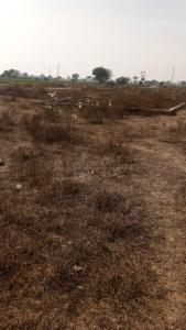 450 Sq.ft Residential Plot for Sale in Palwali, Faridabad