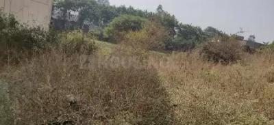 1500 Sq.ft Residential Plot for Sale in Moshi, Pune