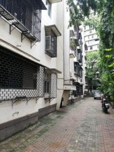 Gallery Cover Image of 490 Sq.ft 1 BHK Apartment for rent in Panvel for 7800