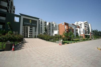 Gallery Cover Image of 1750 Sq.ft 3 BHK Apartment for rent in Bellandur for 38000