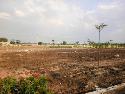 Gallery Cover Image of  Sq.ft Residential Plot for buy in Nandigama for 4100000