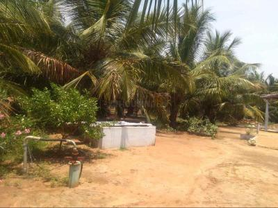 Gallery Cover Image of  Sq.ft Residential Plot for buy in Gopalpur for 1700000