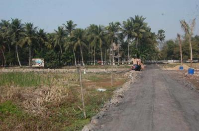 Gallery Cover Image of  Sq.ft Residential Plot for buy in Thakurpukur for 750000