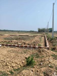 Gallery Cover Image of  Sq.ft Residential Plot for buy in Phulnakhara for 1200000