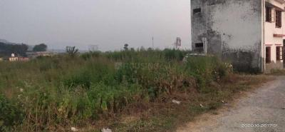 1874 Sq.ft Residential Plot for Sale in Dhalwala, Rishikesh