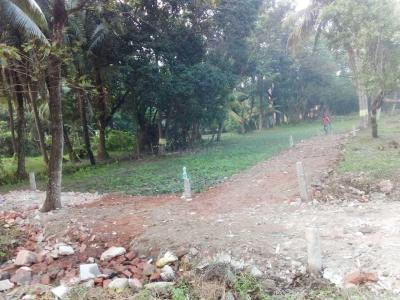 Gallery Cover Image of  Sq.ft Residential Plot for buy in Kalagachhia for 600000