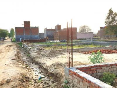 Gallery Cover Image of 540 Sq.ft Residential Plot for buy in Sector 142 for 660000