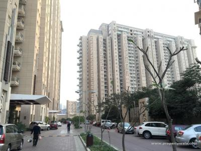Gallery Cover Image of 6445 Sq.ft 4 BHK Apartment for buy in DLF Magnolias, Sector 42 for 155000000