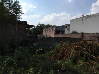 Gallery Cover Image of  Sq.ft Residential Plot for buy in Jagatpura for 8400000