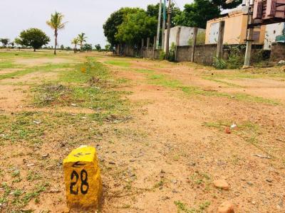1860 Sq.ft Residential Plot for Sale in Thamaraipakkam, Chennai