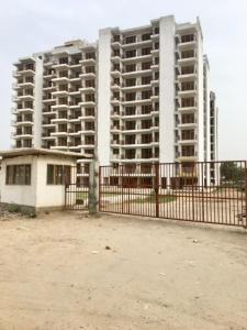 Gallery Cover Image of 1700 Sq.ft 3 BHK Independent Floor for buy in Sector 10A for 8800000