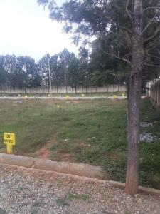 2400 Sq.ft Residential Plot for Sale in Marsur, Bangalore