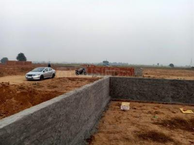 950 Sq.ft Residential Plot for Sale in Sector 43, Noida