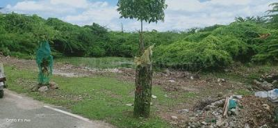 1200 Sq.ft Residential Plot for Sale in Pammal, Chennai