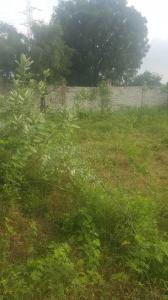Gallery Cover Image of  Sq.ft Residential Plot for buy in Bandlaguda Jagir for 33300000