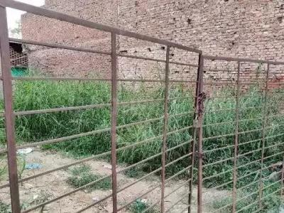 900 Sq.ft Residential Plot for Sale in Ali, New Delhi
