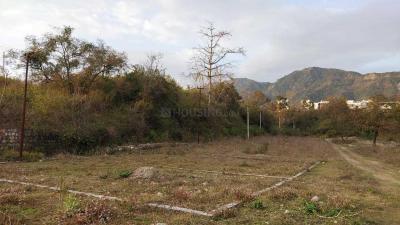 1809 Sq.ft Residential Plot for Sale in Kishanpur, Dehradun