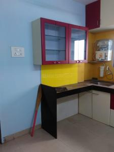 Gallery Cover Image of 560 Sq.ft 1 BHK Apartment for rent in Narhe for 8000