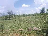 2400 Sq.ft Residential Plot for Sale in Thuraimangalam, Perambalur