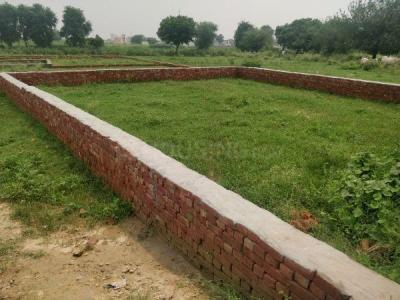Gallery Cover Image of 10000 Sq.ft Residential Plot for buy in Om Radha Kunj, Dadri for 500000