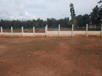 Gallery Cover Image of  Sq.ft Residential Plot for buy in Whitefield for 3600000