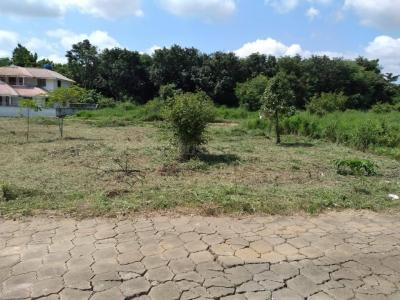 9015 Sq.ft Residential Plot for Sale in Akathethara, Palakkad