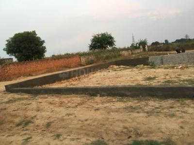 100 Sq.ft Residential Plot for Sale in Ecotech III, Greater Noida