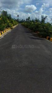 2400 Sq.ft Residential Plot for Sale in Sheriguda, Hyderabad