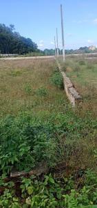 450 Sq.ft Residential Plot for Sale in Ibadullapur Urf Badalpur, Greater Noida
