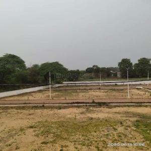 900 Sq.ft Residential Plot for Sale in Sector 49, Noida